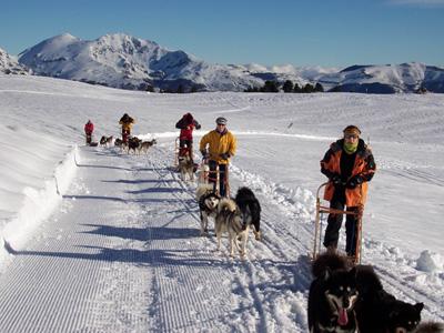 Week-end chiens de traineaux et raquettes à neige dans les Pyrénées